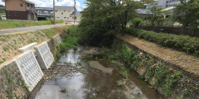 近自然河川への改修 -施工前-