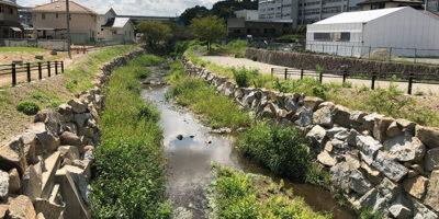 近自然河川への改修 -施工後-