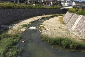 低水路に澪筋を設ける工事後①